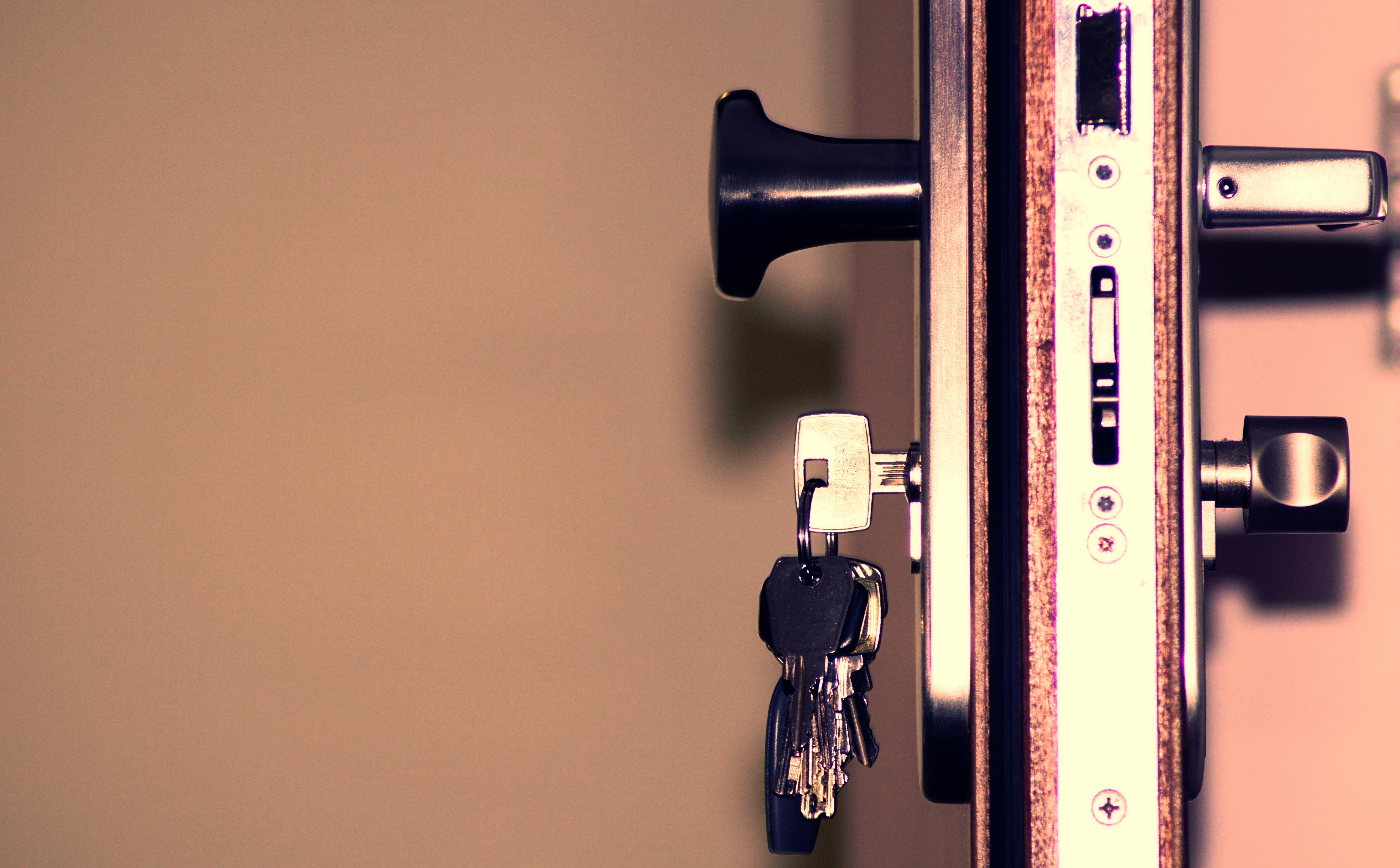 DIY Security System Versus Professional