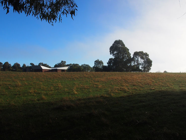 Leura Lane House viewed from a distance has a distinctive form