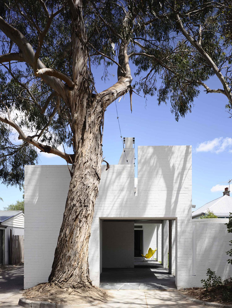 A large Eucalyptus tree overhangs the rear of Park Lane House the home is designed to take advantage of this natural feature