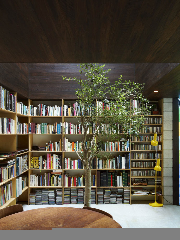 Trees grow indoors at Raven Street House