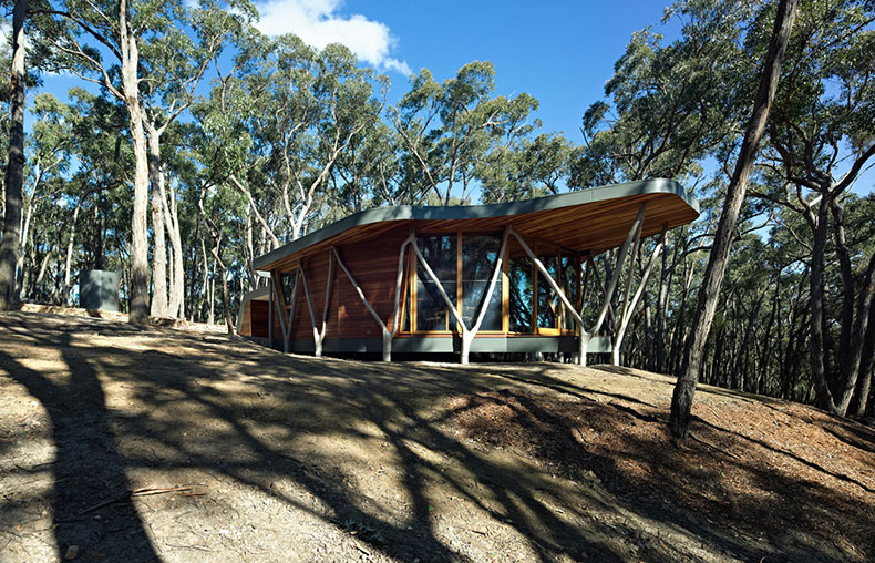 Trunk House is a small bush house built from stringy bark trees cleared from the site