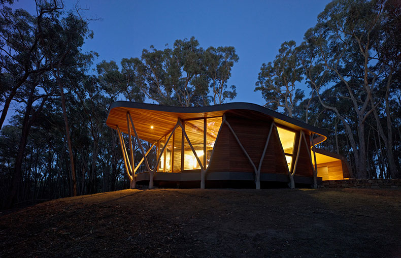 The small bush house lit up at night shows off its timber structure
