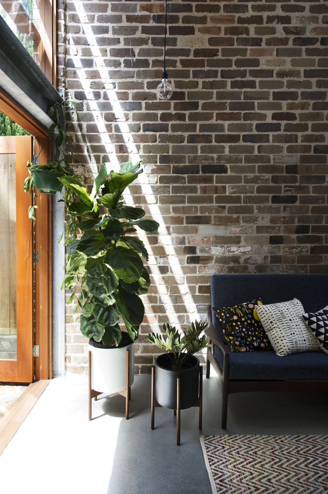 Walter Street Terrace by David Boyle Architects (via Lunchbox Architect)