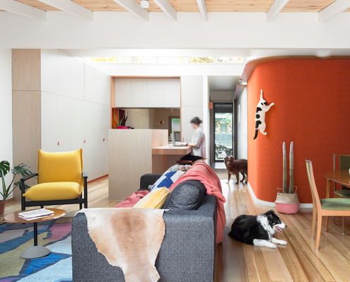 Casa de Gatos by WOWOWA Architecture (via Lunchbox Architect)