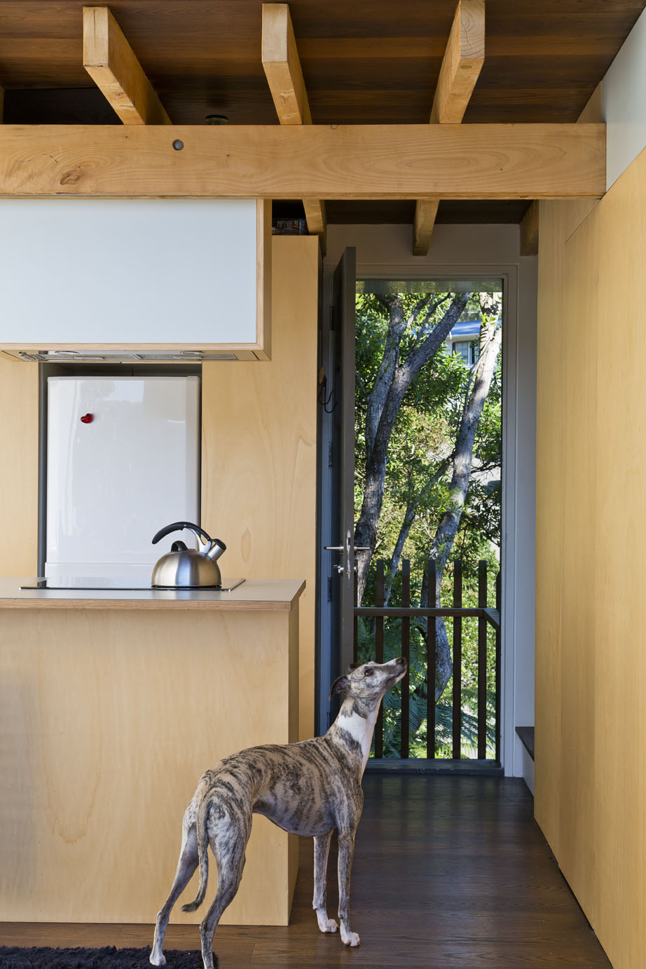 compact japanese inspired house lives large thanks to a wall of glass