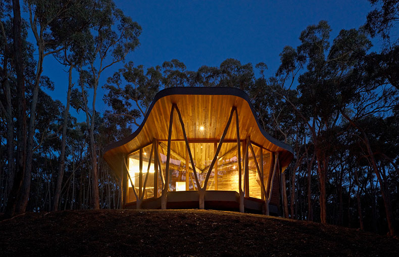Trunk House: Modern Bush House Built With Trees From Site