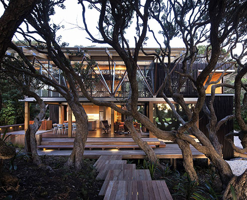 Under Pohutukawa House